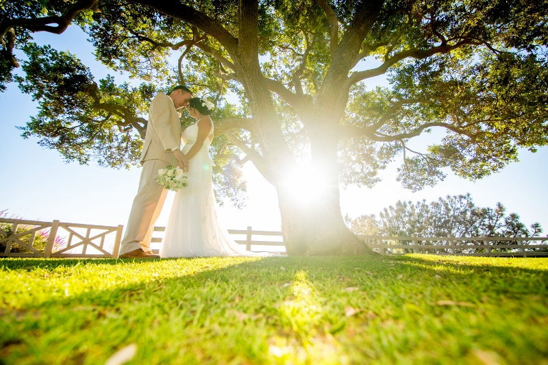 Bluff wedding photos.jpg