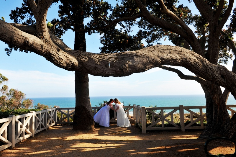 Brides on the Bluff in Santa Monica.jpg